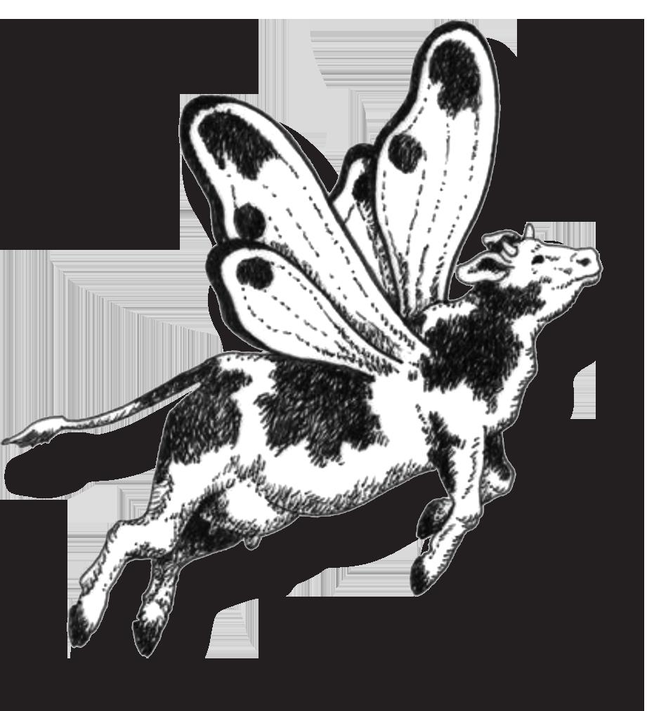 a vaca voadora